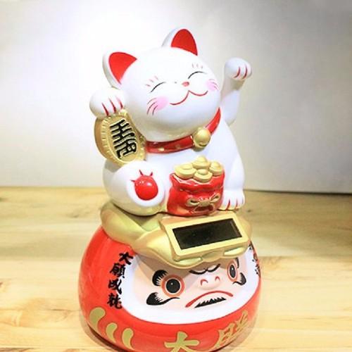Mèo thần tài daruma ước nguyện thành công trắng