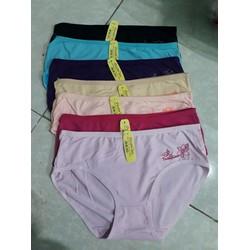 5 quần lót nữ cotton, có size cho người từ 55kg trở lên