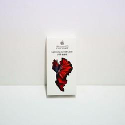 Cáp sạc iphone 6S cá chép đỏ –box lớn nguyên seal