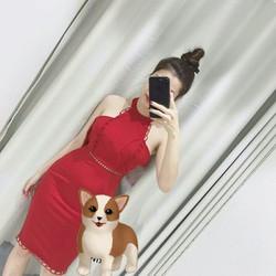 Đầm body hotgir cực xinh giảm giá cực sốc