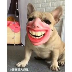 Mặt nạ hài hước