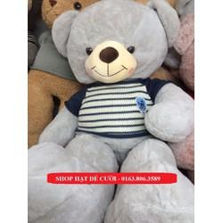 Gấu Bông Sailing Xám