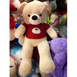Gấu Bông Teddy Hana Màu Nhạt