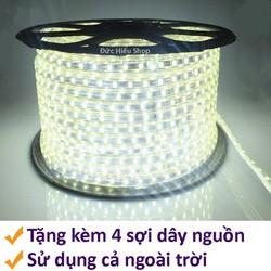 Đèn LED dây 5050 cuộn 100m
