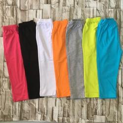 quần legging dài màu trơn - qg100