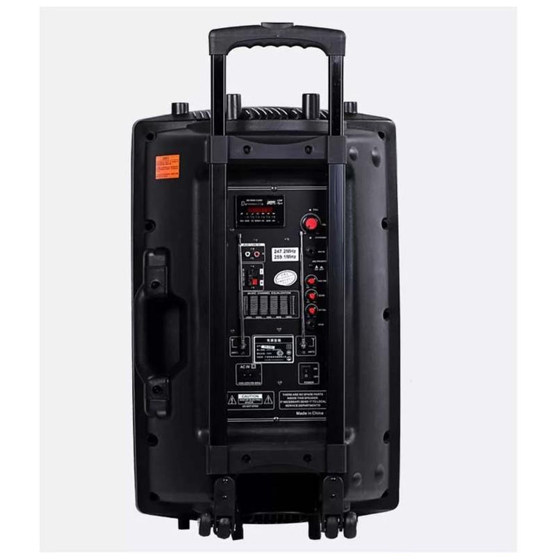 Loa kéo Bluetooth Temeisheng DP-2305L, Đen 2