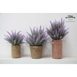 Chậu hoa để bàn Lavender Vintage No.9