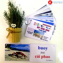 Flashcard tiếng Anh cho bé KatchUp - Chủ đề Biển