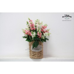 Chậu hoa để bàn Vintage No.8