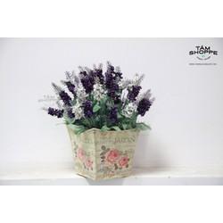 Chậu hoa để bàn Vintage Lavender No.12