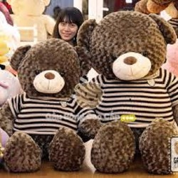 gấu bông khổng lồ 1m6