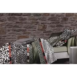 Bộ Drap và ga trải giường giá rẻ đẹp chấm màu kết hợp vằn TL53