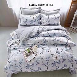 Bô ga vỏ gối cotton korea cao cấp HL01