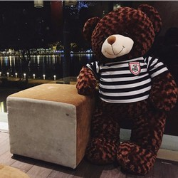 Gấu bông teddy 1m4