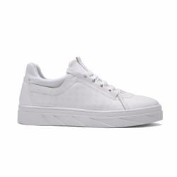 Giầy Sneaker Nam 2017 NEW
