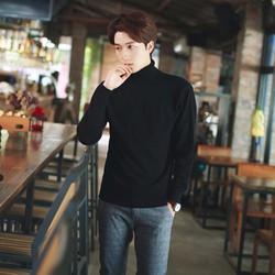 Hàng nhập cao cấp : Áo len nam cao cổ phong cách N378