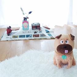 Chó bông Mel Đẳng cấp thú cưng