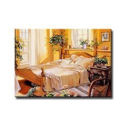 Tranh trang trí nhà cửa 40x60