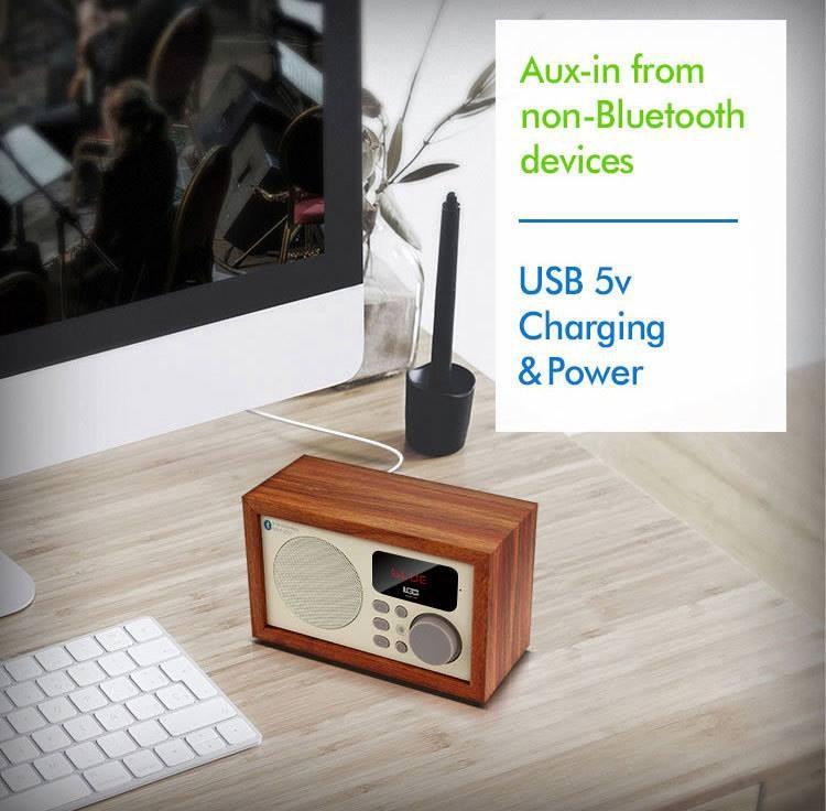Loa Bluetooth kèm đài FM 13