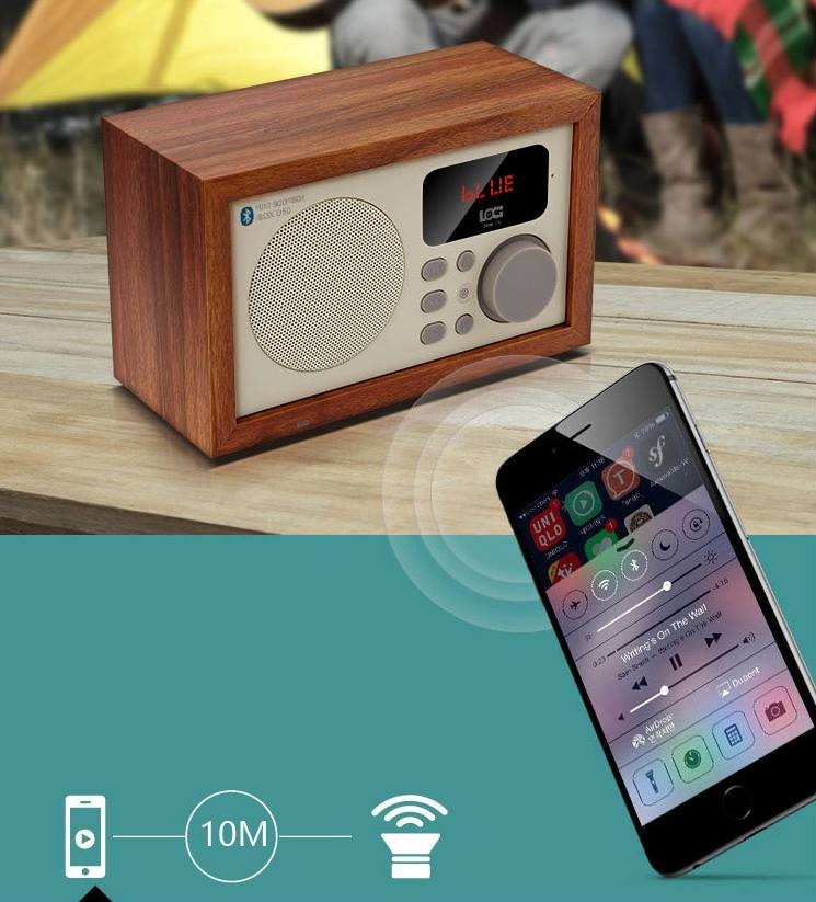 Loa Bluetooth kèm đài FM 12