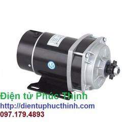 Động cơ xe điện 48V 450W chổi than DC giảm tốc