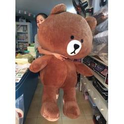 Gấu brown 1m4 - gấu line lớn