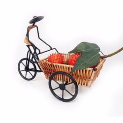 Kệ hoa quả hình người đạp xe ba gác 30x15cm FtraMart