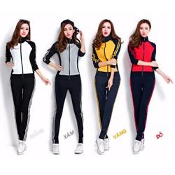 Bộ quần áo thể thao tay dài phối màu xinh xắn - AV5027