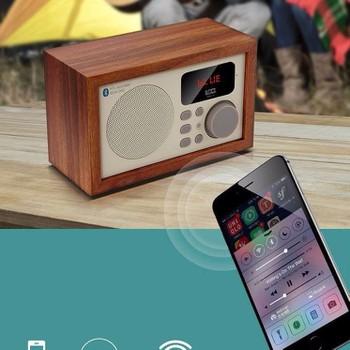 Loa Bluetooth kèm đài FM