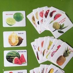 Bộ thẻ học thông minh 16 chủ đề 416 thẻ cho bé - bộ thẻ học
