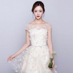 Đầm Ren Cao Cấp Giống Y Hình