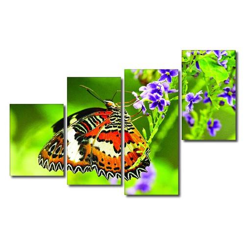 TRANH ĐẸP TREO TƯỜNG THIÊN NHIÊN HOA VÀ BƯỚM 4 MẢNH GHÉP B4-29 - 4162694 , 4937339 , 15_4937339 , 859000 , TRANH-DEP-TREO-TUONG-THIEN-NHIEN-HOA-VA-BUOM-4-MANH-GHEP-B4-29-15_4937339 , sendo.vn , TRANH ĐẸP TREO TƯỜNG THIÊN NHIÊN HOA VÀ BƯỚM 4 MẢNH GHÉP B4-29
