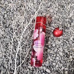 Xịt toàn thân BBW Japanese Cherry Blossom