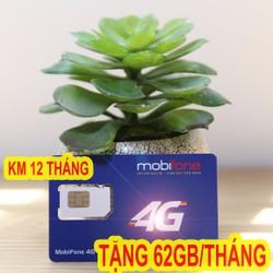 Sim 3G 4G Mobifone  62GB mỗi tháng