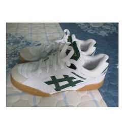 Giày thể thao nam asia