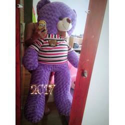 Gấu Teddy 1m6 - Gấu bông Teddy m6 giá rẻ
