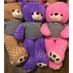 Gấu Teddy 1m2 - Gấu bông Teddy khổ m2 giá rẻ - Đủ màu