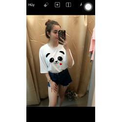 Áo thun nữ form rộng tay lỡ in Panda