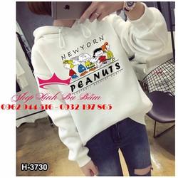 Áo hoodie teen siêu cute