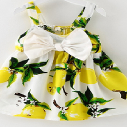 Váy hoa công chúa