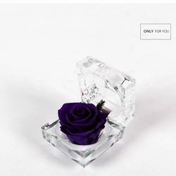 Hoa hồng bất tử - Hộp nhẫn cung cấp bởi WINWINSHOP88