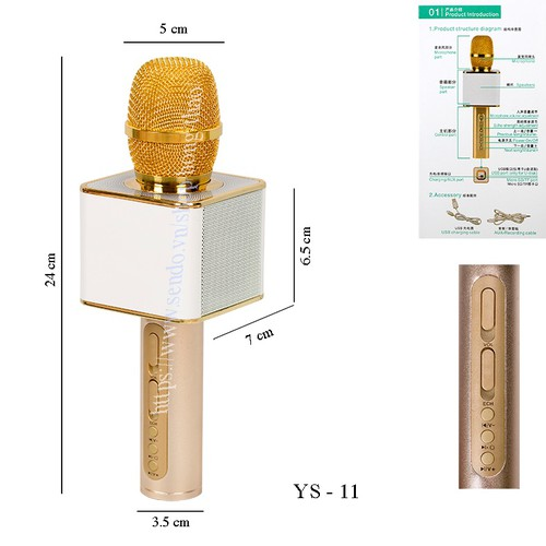 Micro Karaoke YS 11