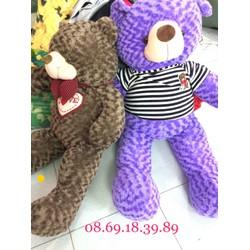 gấu bông Teddy 1m4 giá rẻ