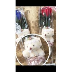 Hoa hồng gấu bông