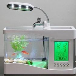 Bể cá mini kiêm đồng hồ để bàn
