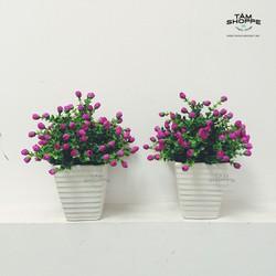 Chậu hoa Vintage Ngâu nụ No.20