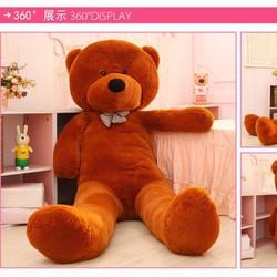 Gấu bông Teddy Boy 1m8 khổng lồ