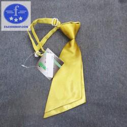 [Chuyên sỉ - lẻ] Cà vạt thắt sẵn nam Facioshop CG05 - bản 8.5cm