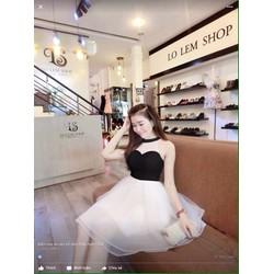 Đầm xòe công chúa cúp ngực D872