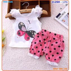 Bộ mặc nhà thêu bướm phối quần bi xinh xắn cho bé ngày hè
